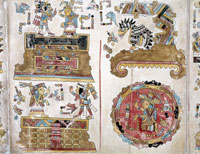 Страница из манускрипта венского кодекса